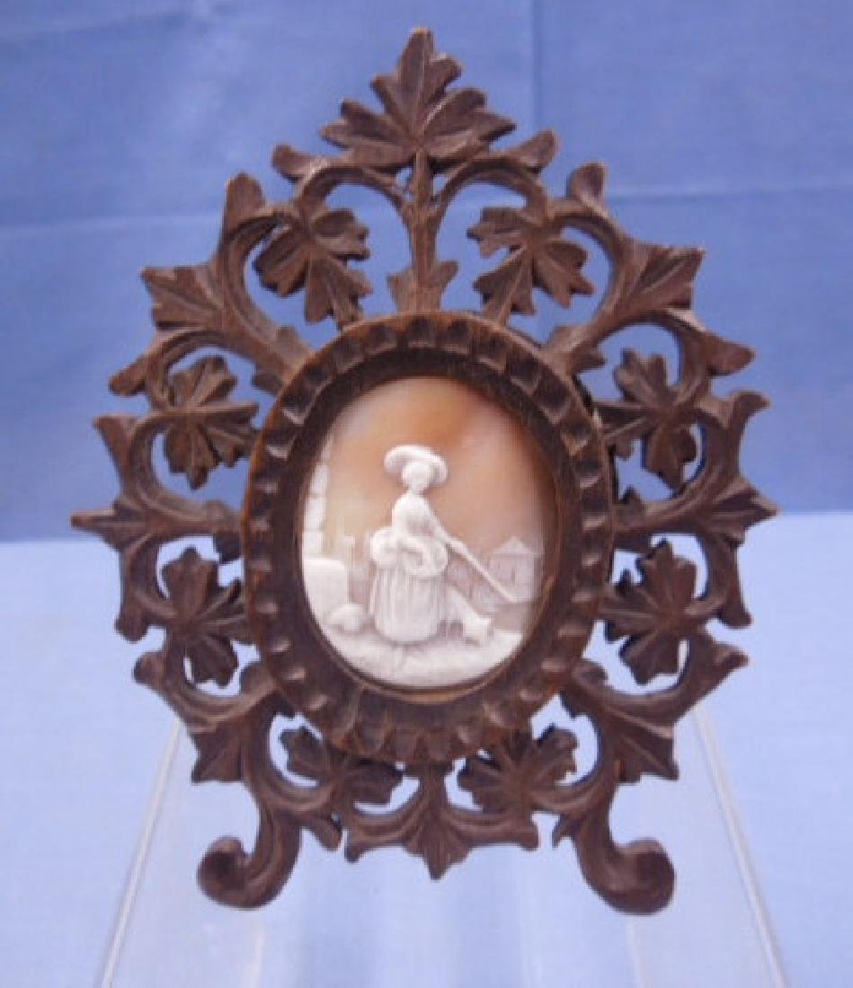 Framed Carved Shell Cameo