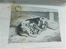 (2) 19th C. Book of Engravings