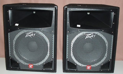 1008: Peavey Speakers