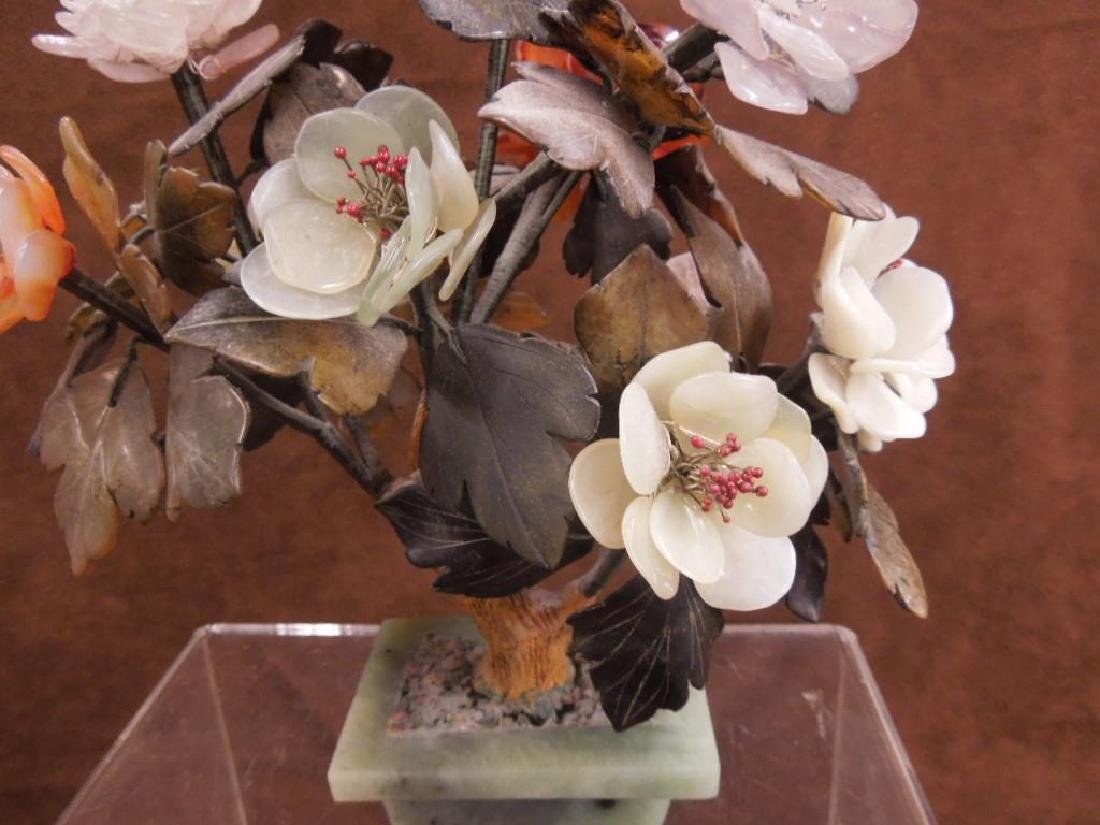 Chinese Ming Tree - 4