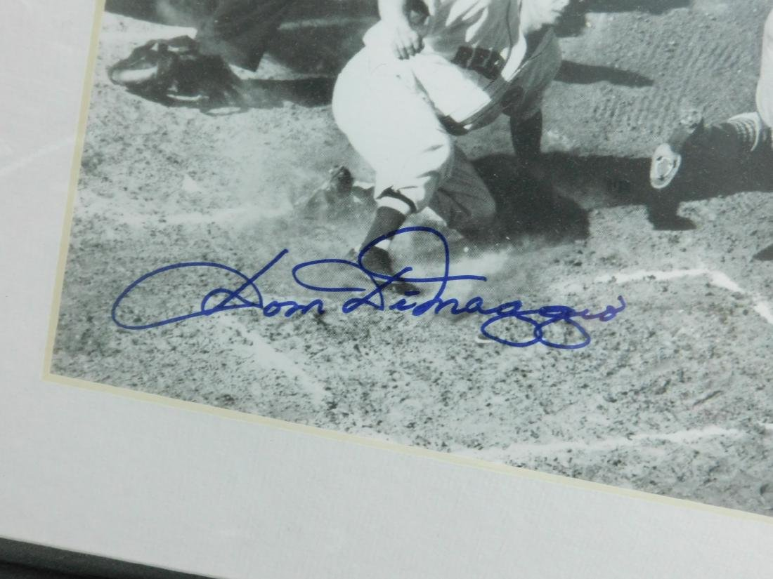 Framed Autographed Photo Dom DiMaggio - 3