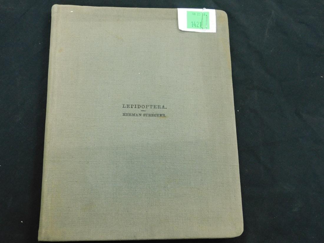 1 Vol. Herman Strecker Leidoptera First Edition