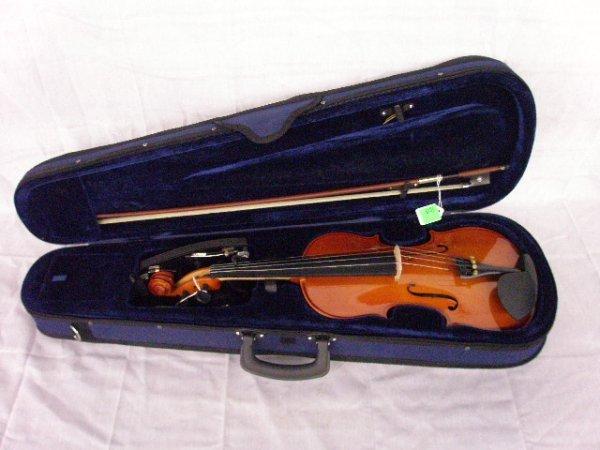 3013: Palatino VN-KIT violin