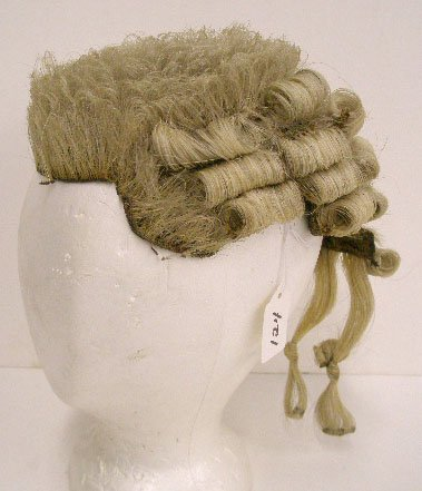 1124: Intricately created gray human hair wig