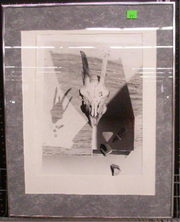 1002: Laurence Bach Nightspells #18 Photo Print