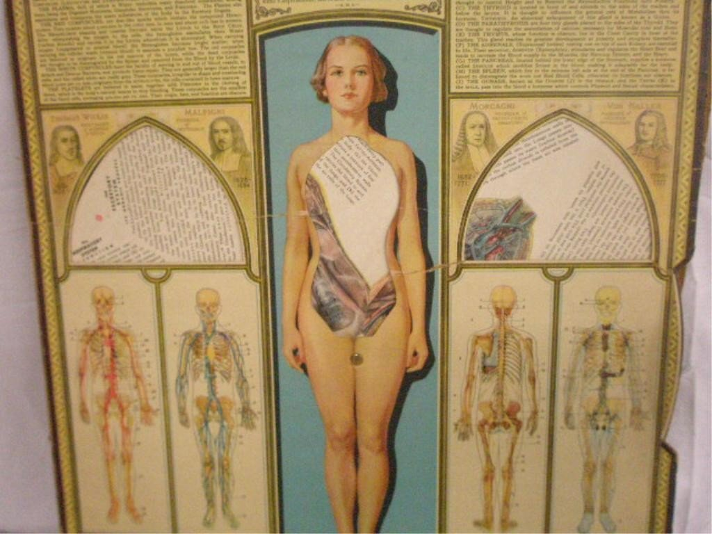 "1013: ""BodyScope"" Vintage Medical Chart"