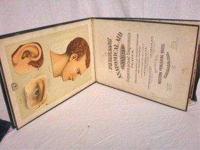 """""""Physicians' Anatomical Aid. A Manikin"""""""