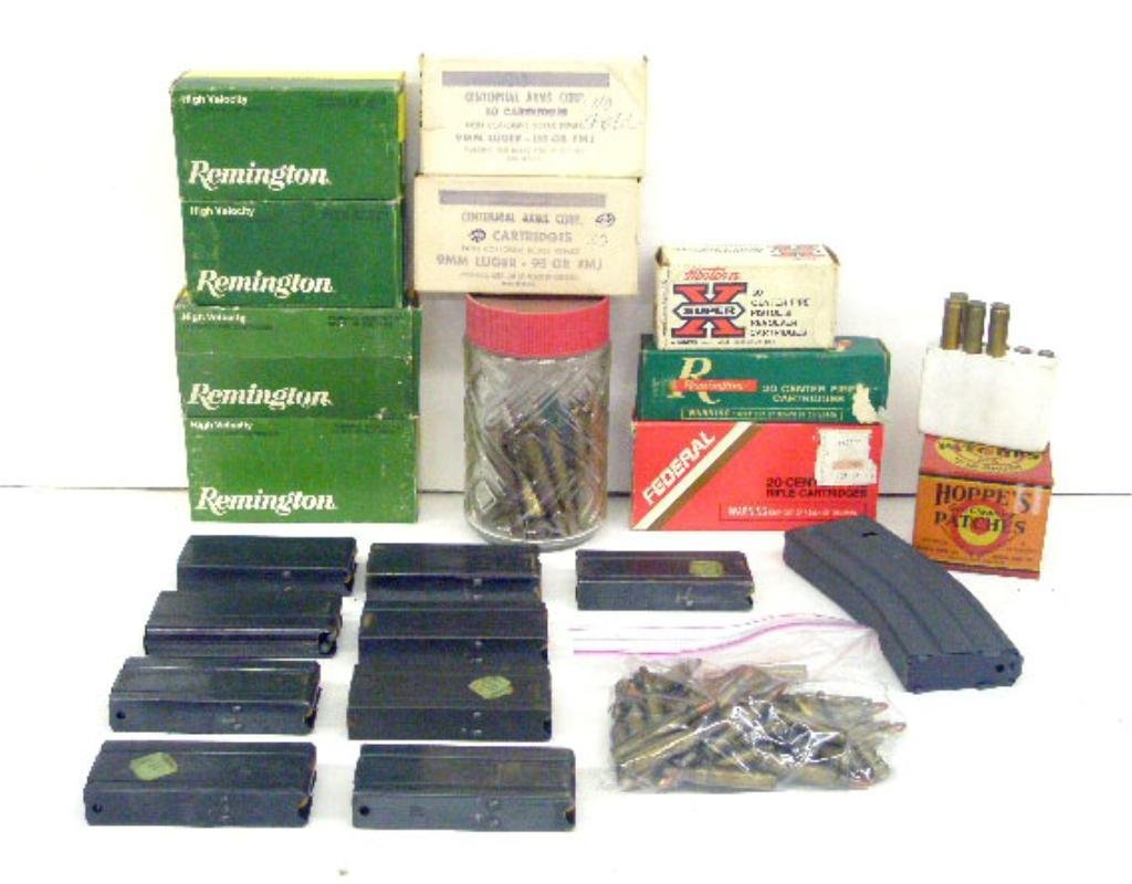 1000A: Lot Of Assorted Ammo & Clips