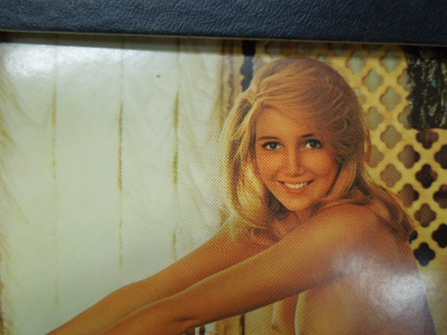 1970's & 1990's Playboy Playmate Calendars - 2