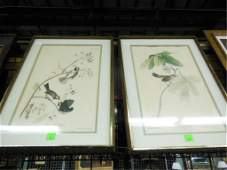 [2] J.J. /Lucy Audubon/ R. Havell Folio Engravings