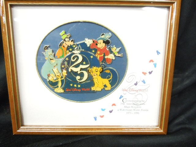 25th Anniv. WDW Cloisonne Framed Pin Set