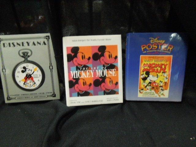 Box Disney Books & Other - 6