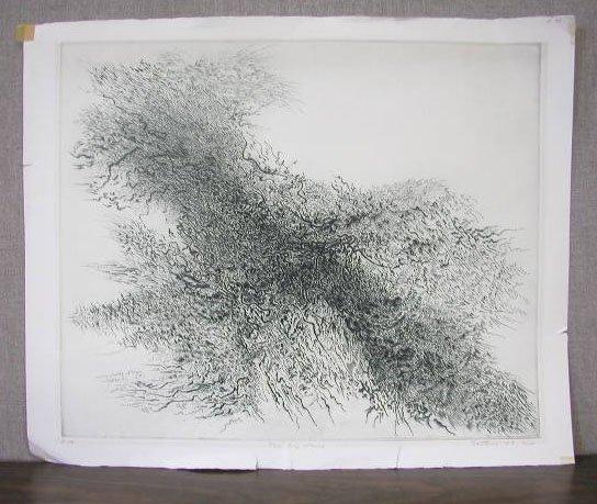 1020: [Gabor] Peterdi, [19]63, signed & dated, 22 1/4 x