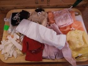 F. M. Princess Diana Doll Clothes & Accessories