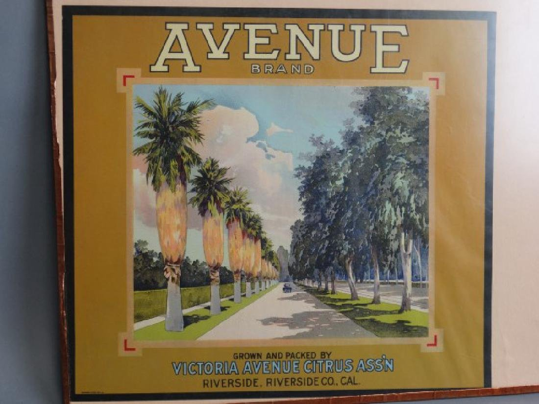 Original Fruit Crate Label - Avenue Brand Citrus