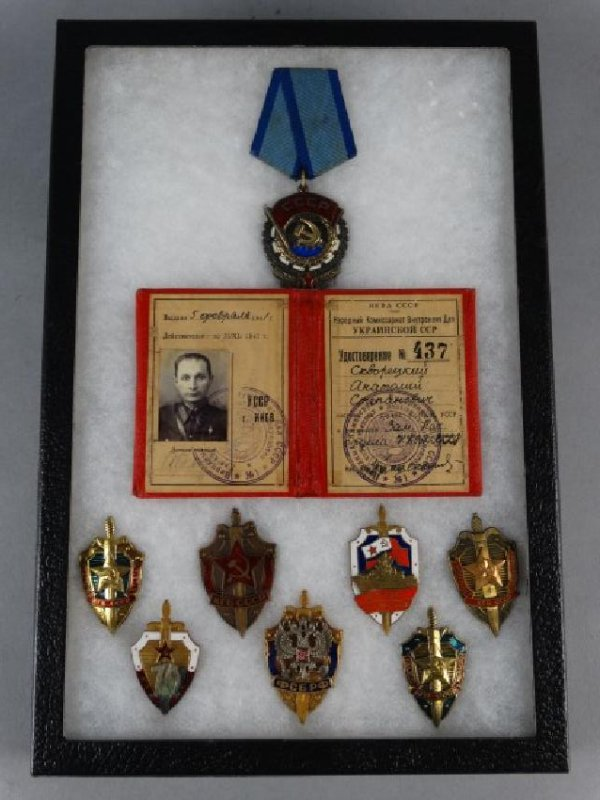Collection of Russian Soviet Medals in Shadowbox - 2