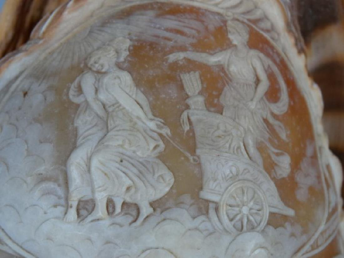 Two Victorian Carved Cameo Shells - 5