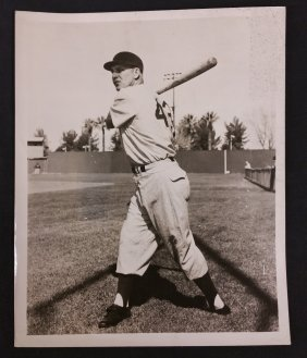 """Walt """"Moose"""" Moryn #43 for the Chicago Cubs, Photo"""