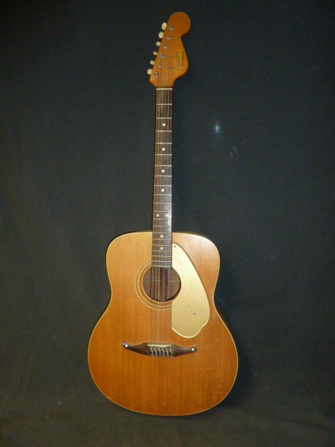 Fender Palomino with Custom Case