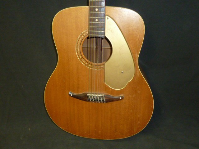 Fender Palomino with Custom Case - 4