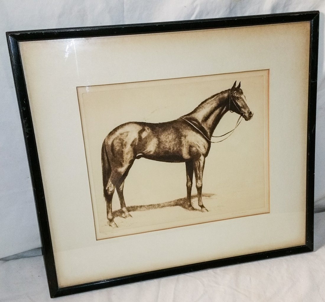 Signed Numbered Horse Etching by C.W. Anderson
