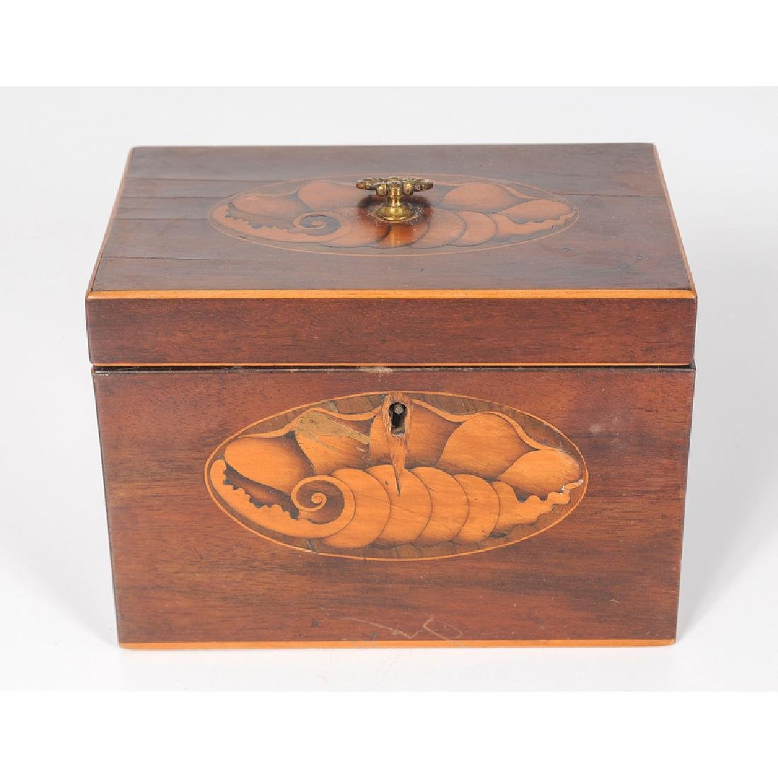 Tea Caddy with Inlaid Conch Shell Decoration - 2