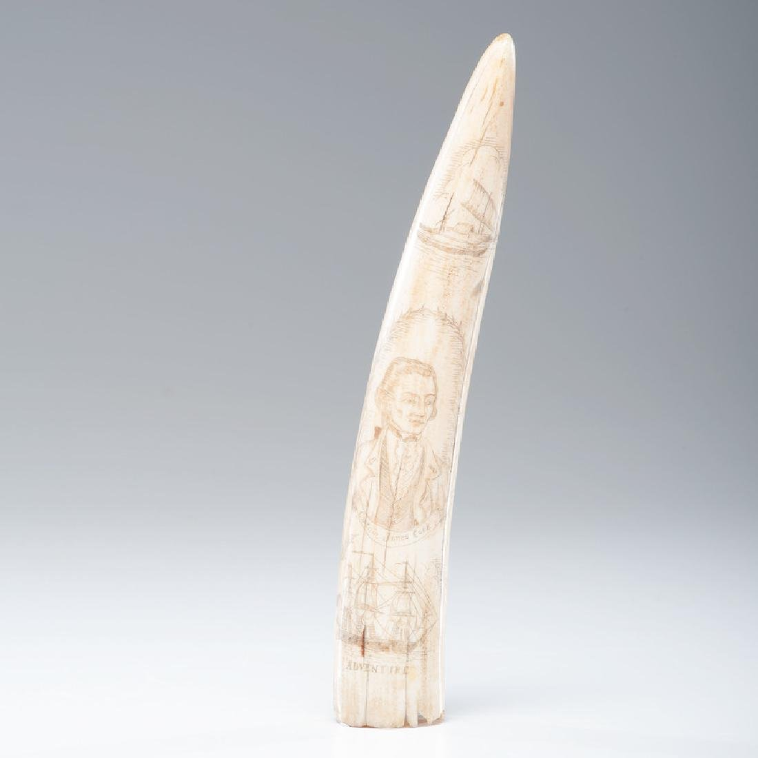 Scrimshaw Walrus Tusk with Captain Cook and Sandwich