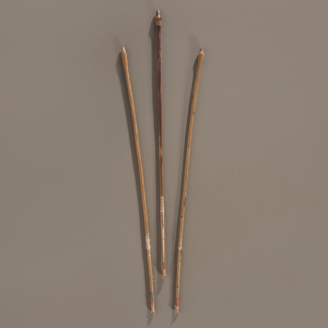 Plains Bird Darts, Collected by Gustav (Gus) Sigel