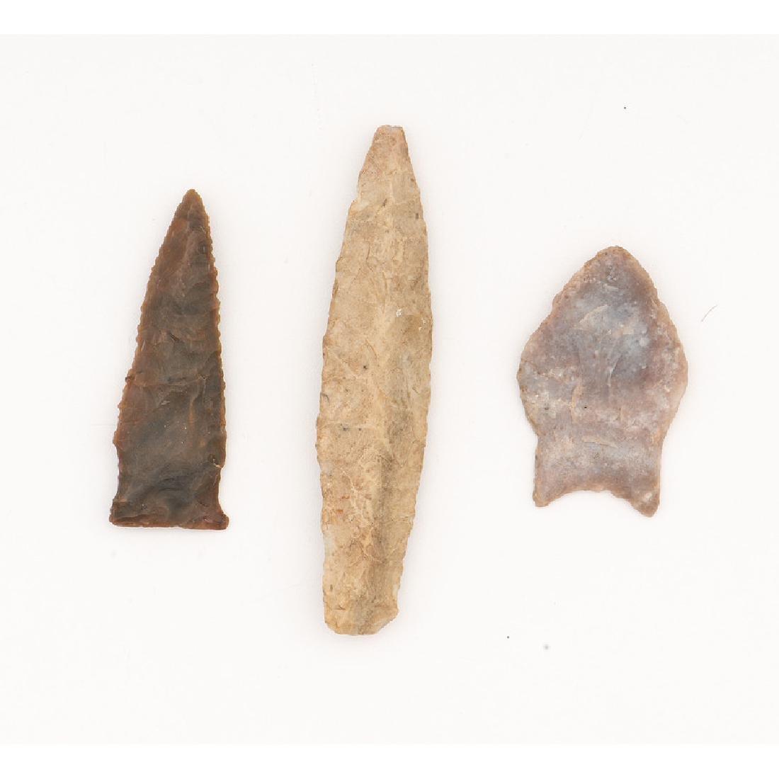 Three Paleo Points,