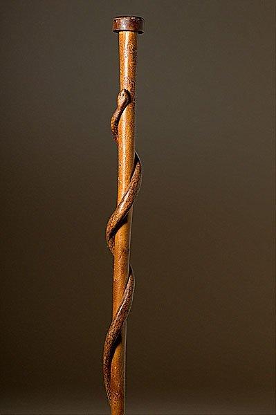 19: Folk Art Snake Cane,
