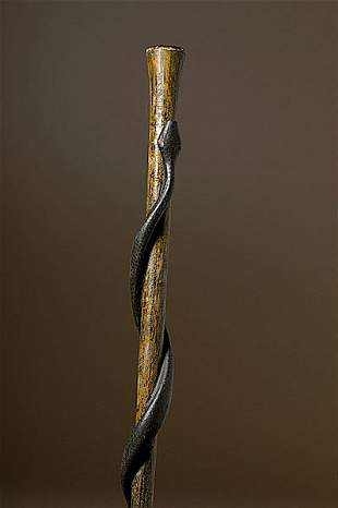 Folk Art Snake Cane,