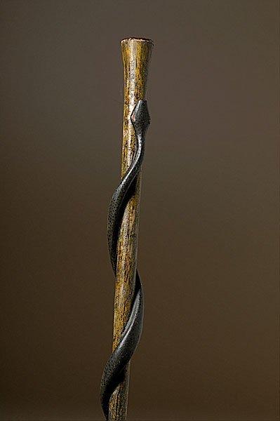 20: Folk Art Snake Cane,