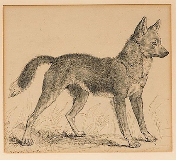 25: Portrait of a Foxby E.T. Seton (British 1860-1946)