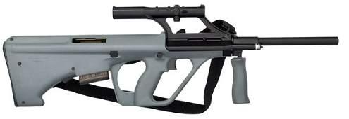 1107: *Austrian Steyr AUG Rifle