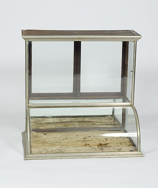 141: Counter Top Display Case