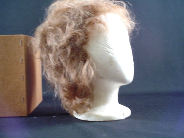 5019: Barbra Streisand Human Hair Wig