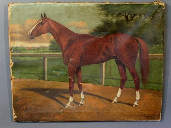 "289: Oil on canvas equine portrait signed ""J.W. Johnson"