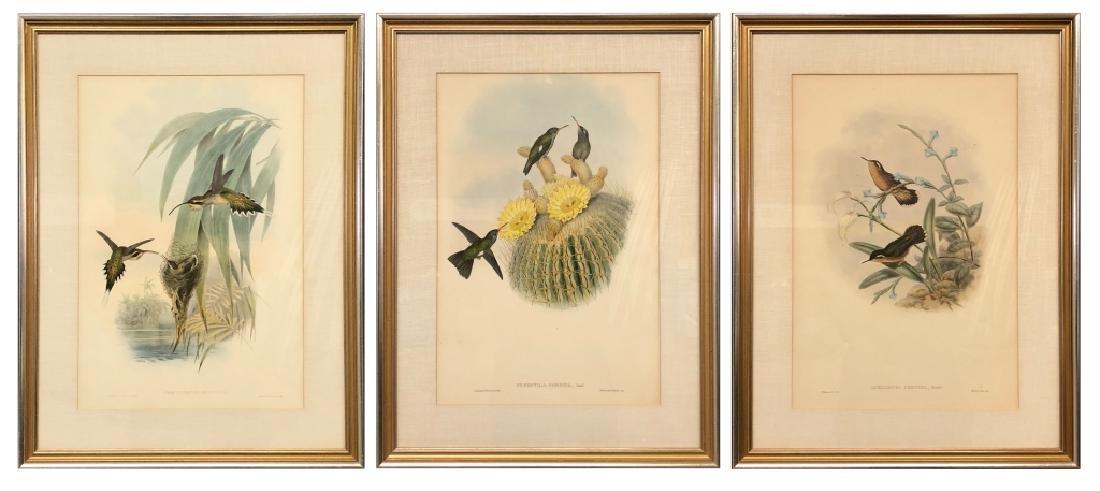 Three Bird Lithographs