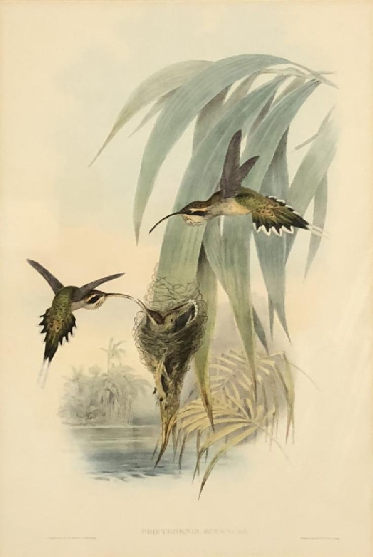 Three Bird Lithographs - 2