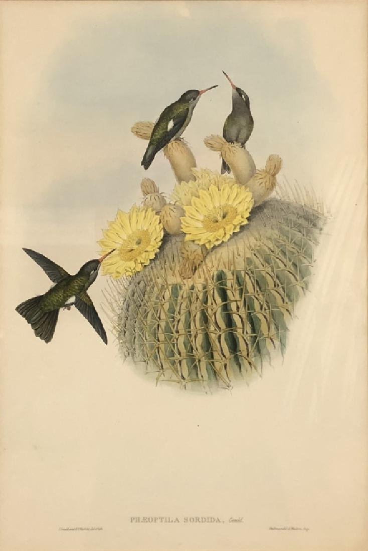 Three Bird Lithographs - 6
