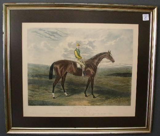 "10: Framed equine print. 23""x27.5"""