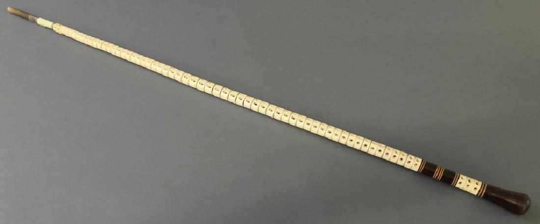 Nantucket Shark Vertebrae Walking Stick