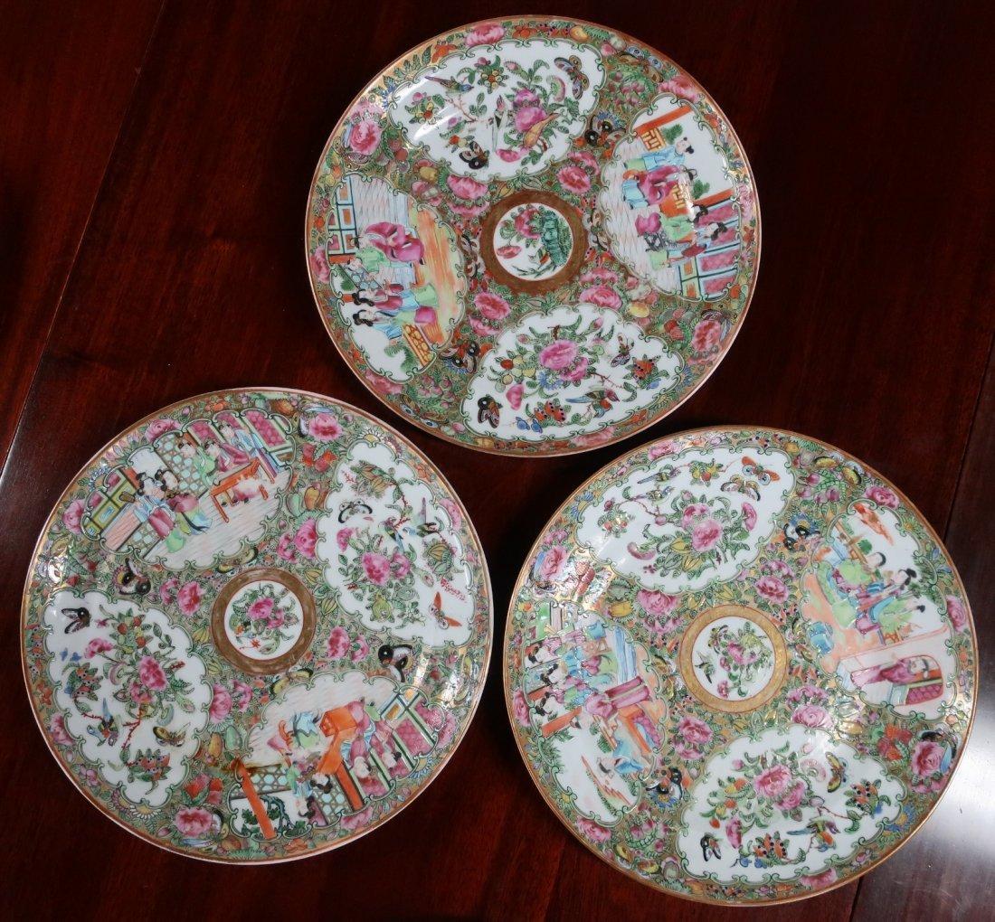 Assembled Set of Twelve Rose Medallion Plates - 4