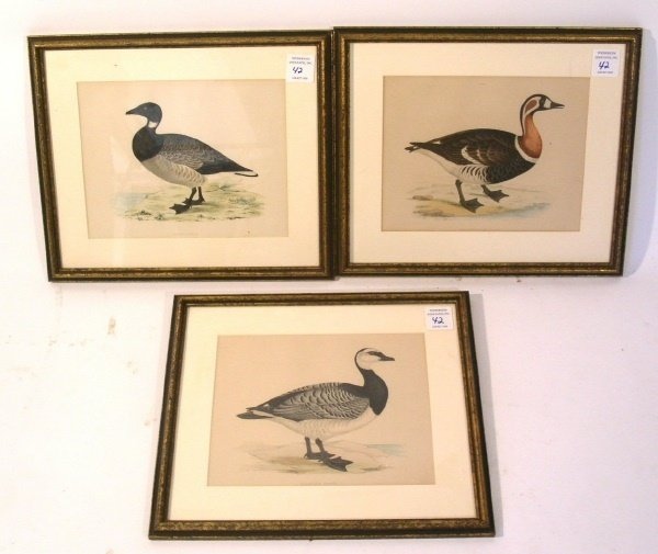 42: Set of three framed and matted prints of geese.