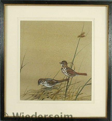 32: Dingle, Edward von Siebold [American/South Caroli