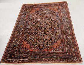 Persian Oriental Center Hall Carpet With Floral Pat
