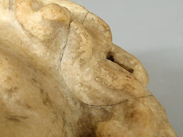 """Carved marble bust of Zeus. As found. 14""""h. - 10"""