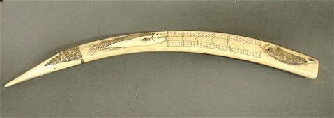 Large Inuit scrimshaw walrus tusk cribbage board, 19th