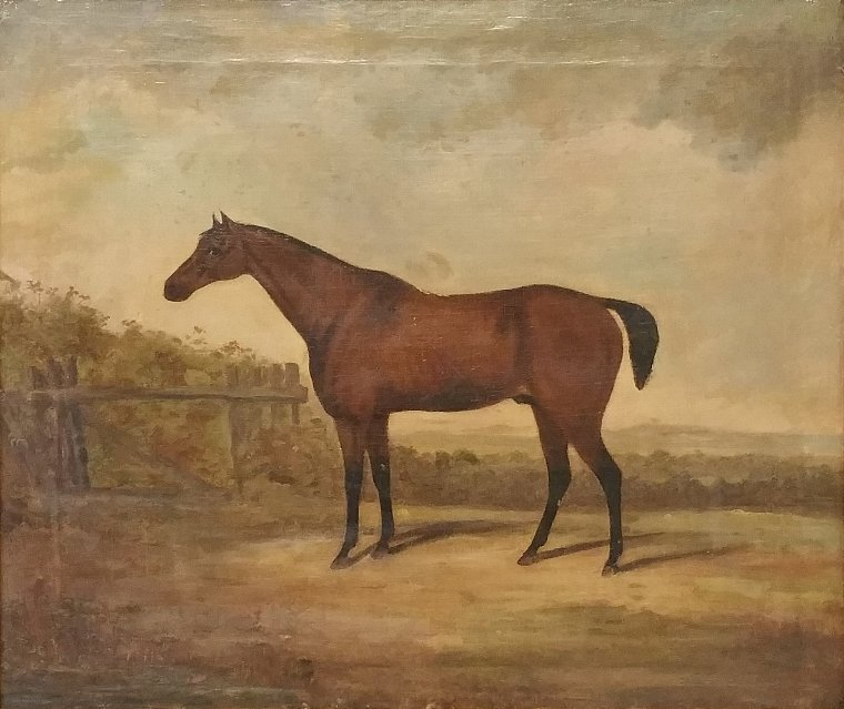 English oil on canvas equine portrait, late 19th c.