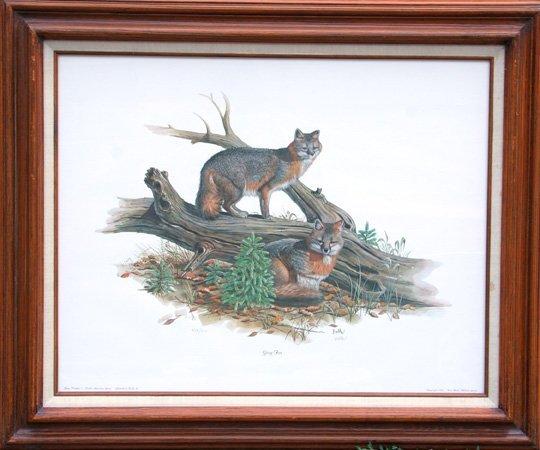 4019: Don Balke, Gray Fox, Lithograph